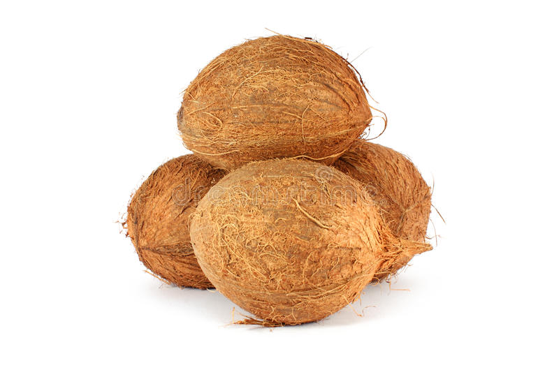 Download Coconuts Royalty Free Stock Images - Image: 14782329