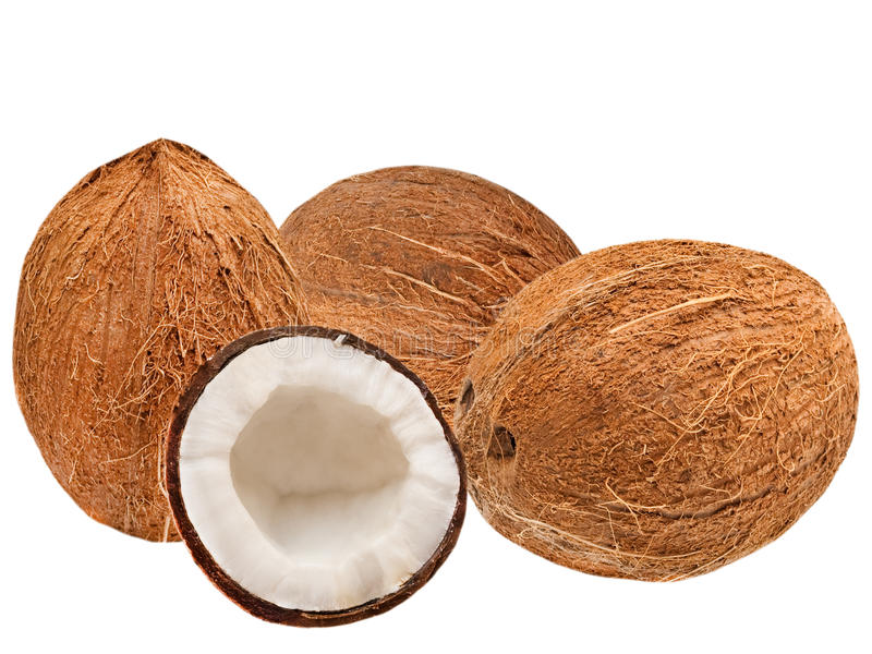 Download Coconuts stock photo. Image of whole, closeup, diet, cocoanut - 18103890