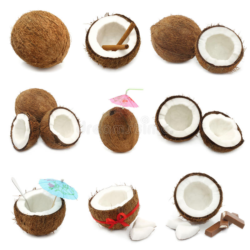 Download Coconuts stock image. Image of cooking, ingredient, lifestyle - 23885433