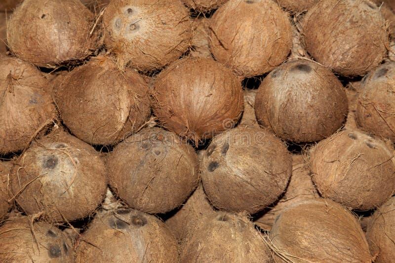 Coconuts. Asian food market in Ho Chi Min aka Saigon Vietname stock images