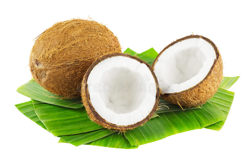 Download Coconuts stock photo. Image of nuts, white, background - 29079016