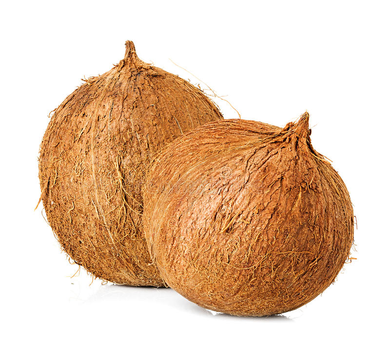 Coconuts Royalty Free Stock Images