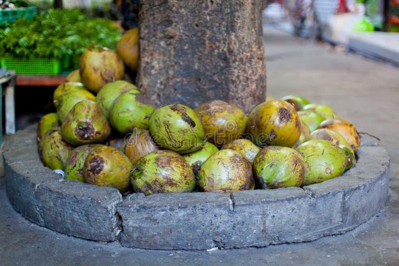 Download Coconuts in asian market stock image. Image of buko, assortment - 31432793