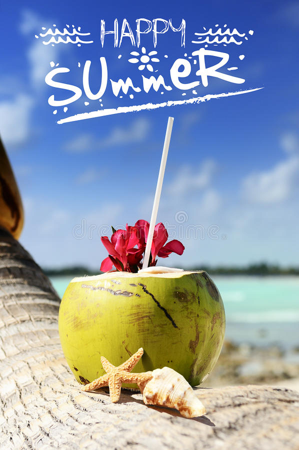Download Coconuts on the beach stock image. Image of ocean, fresh - 31666755