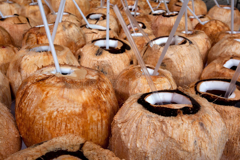 Download Coconuts stock photo. Image of healthy, tropical, tasty - 32682868