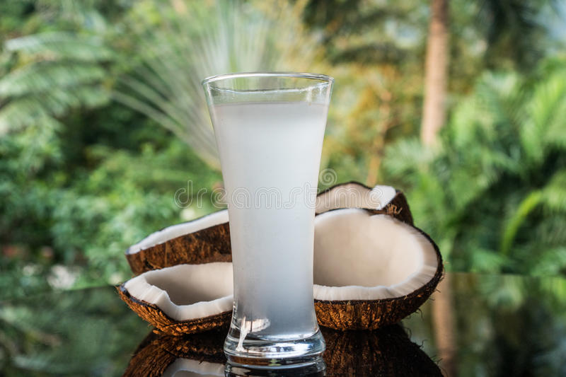 Coconuts and coconut water on the black glass table isolated over blurred palm trees background. Closeup of coconuts and coconut water on the black glass table royalty free stock image