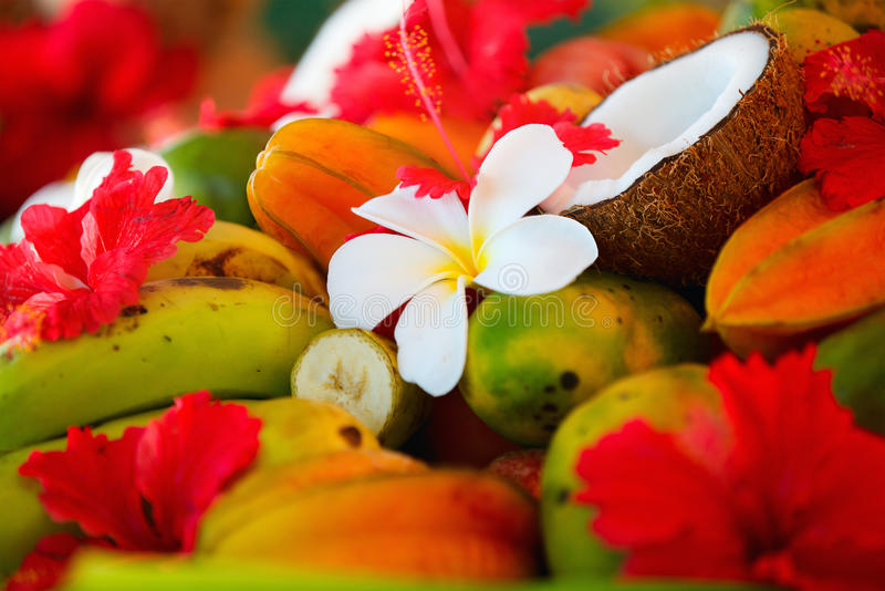 Coconuts, fruits and tropical flowers royalty free stock photos