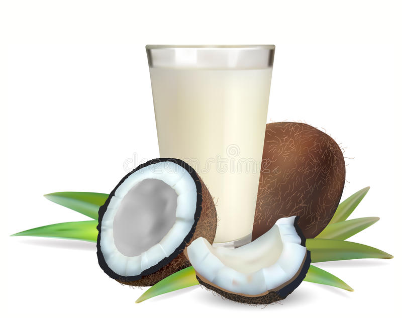 Coconuts and a glass of coconut milk. Vector royalty free illustration
