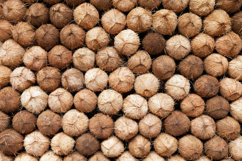 Coconuts heap royalty free stock image