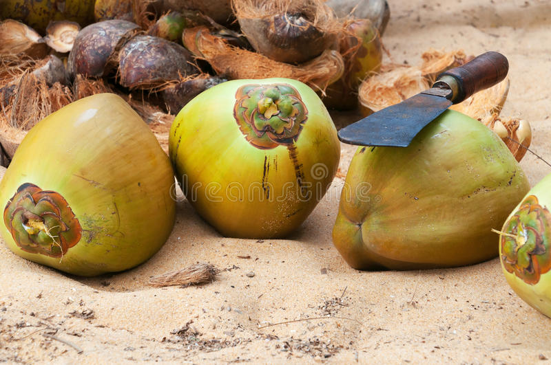 Coconuts with knife royalty free stock image