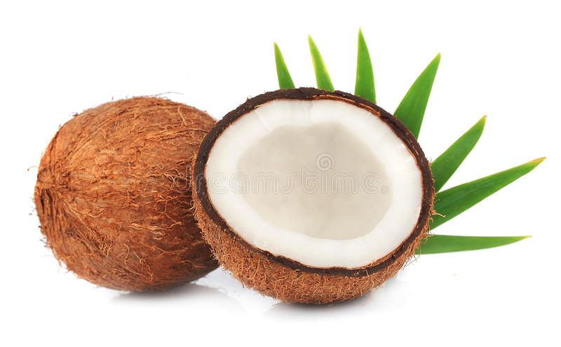 Coconuts With Leaves Stock Images