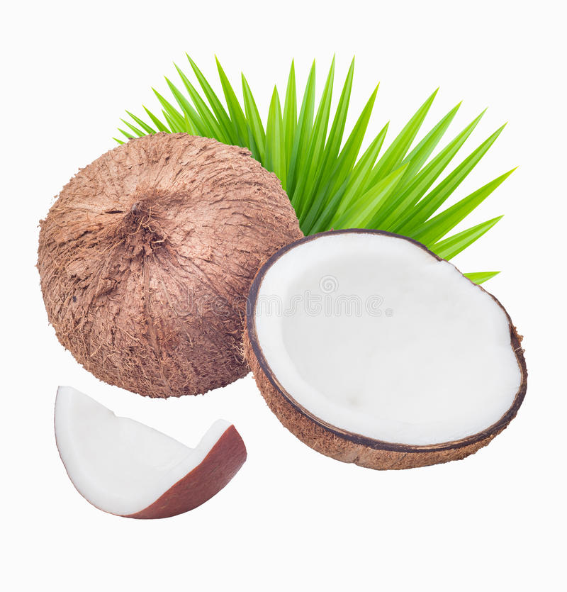 Coconuts with leaves royalty free stock photography