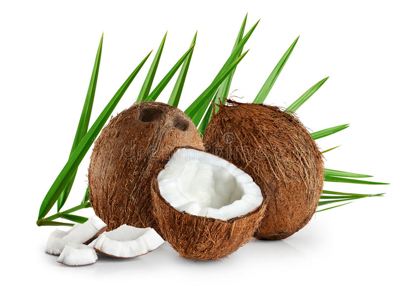 Coconuts with leaves on a white background. stock photography