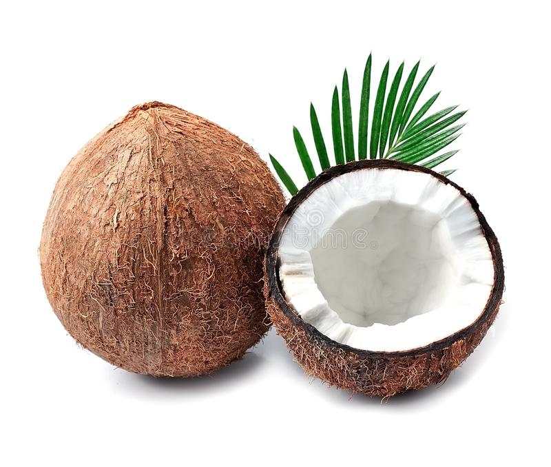 Coconuts with leaves. stock photo