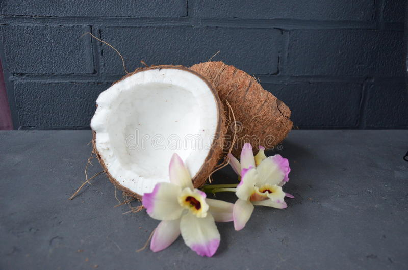 Coconuts with orhid flowers, on dark background. Copy space. royalty free stock photo