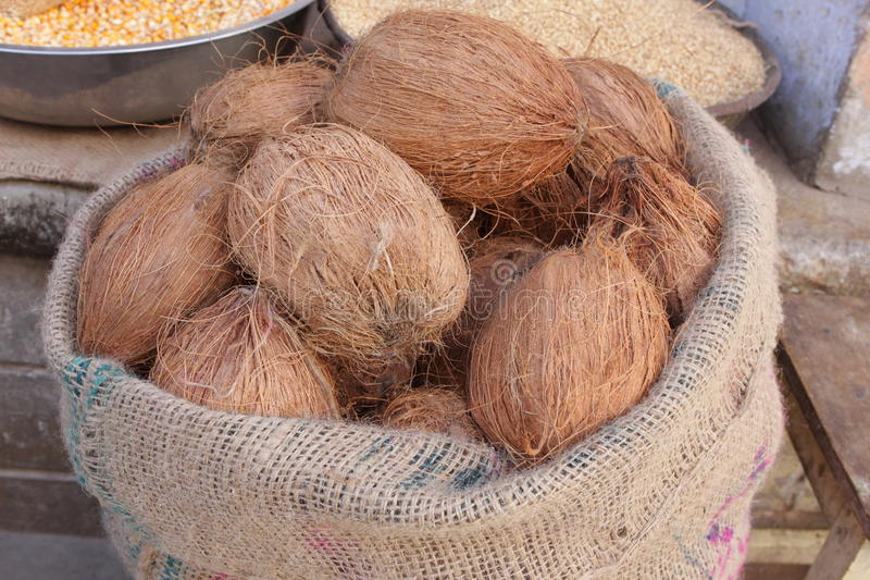 Download Coconuts in a sack stock photo. Image of market, edible - 12748924
