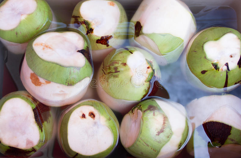 Download Coconuts Stock Images - Image: 32885964