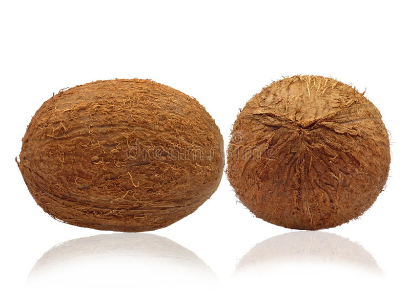 Download Coconuts stock image. Image of tropical, healthy, coconut - 34277041