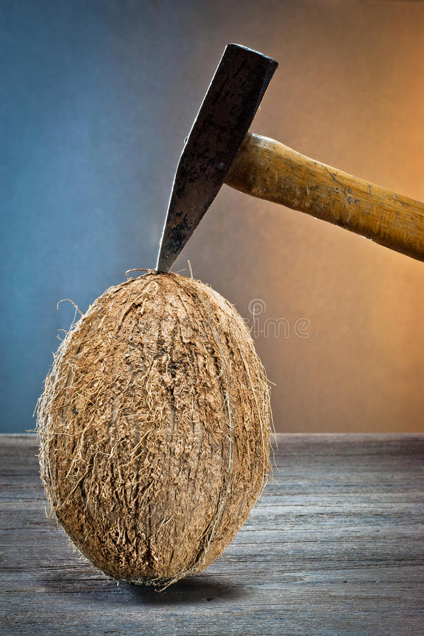 Download Coconuts On Wood Royalty Free Stock Image - Image: 23354796