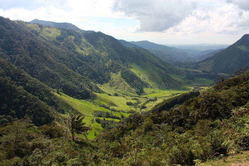 cocora Colombia krajobrazowa dolina obraz stock