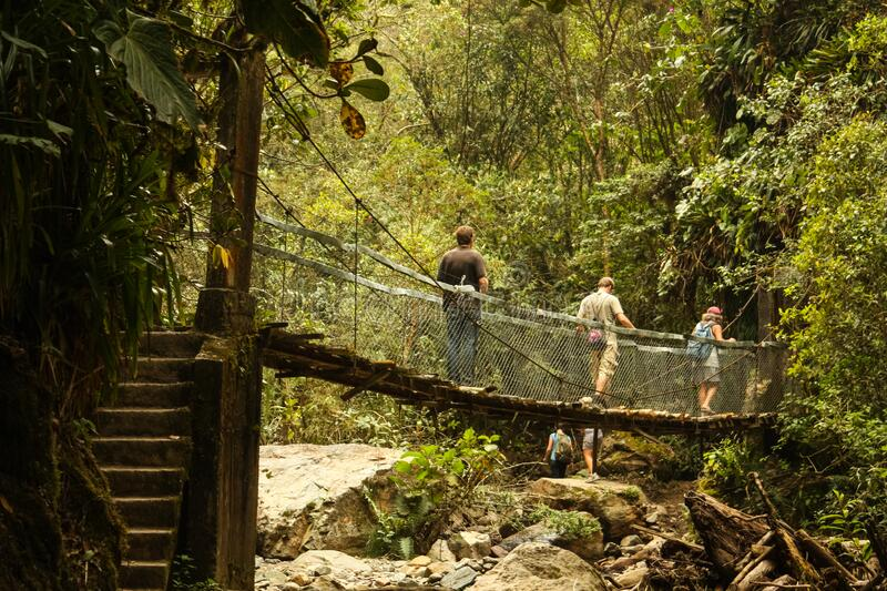 During a walk through the rainforest, tourists cross a suspension bridge over a river in the Cocora Valley, between the mountains stock photo