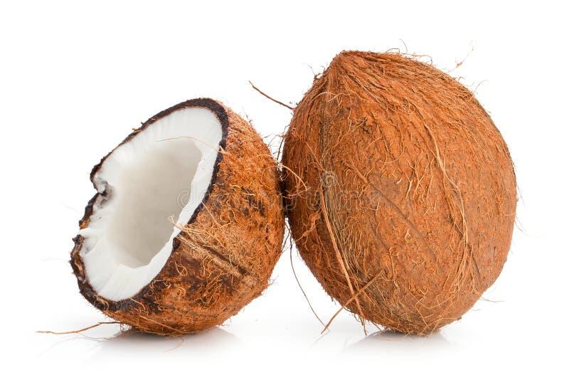 Cocos aislados en el fondo blanco primer fotos de archivo