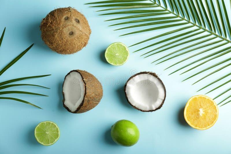 Cocos, cal y limón maduros en fondo del color imagen de archivo libre de regalías