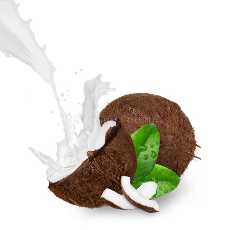 Cocos com respingo do leite fotografia de stock