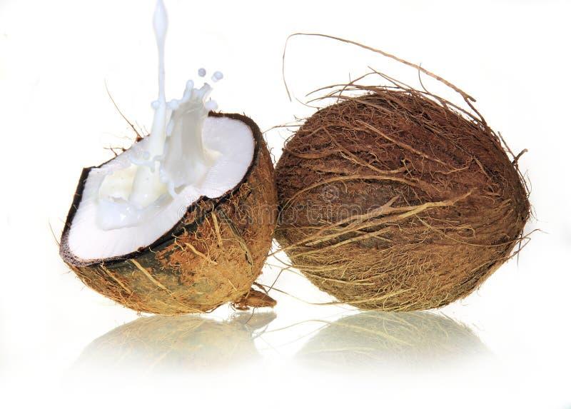 Cocos con el chapoteo de la leche fotografía de archivo