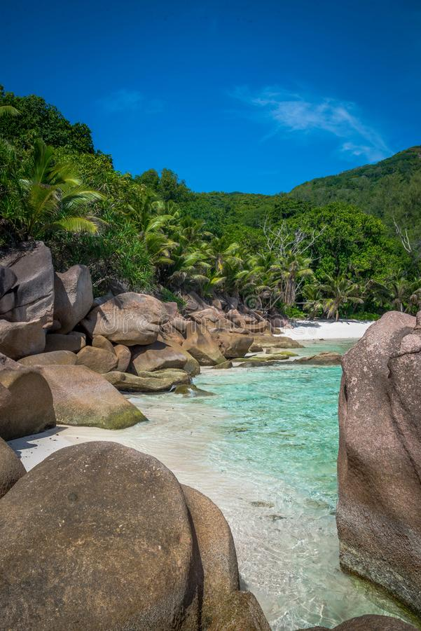 Cocos de Anse foto de archivo libre de regalías