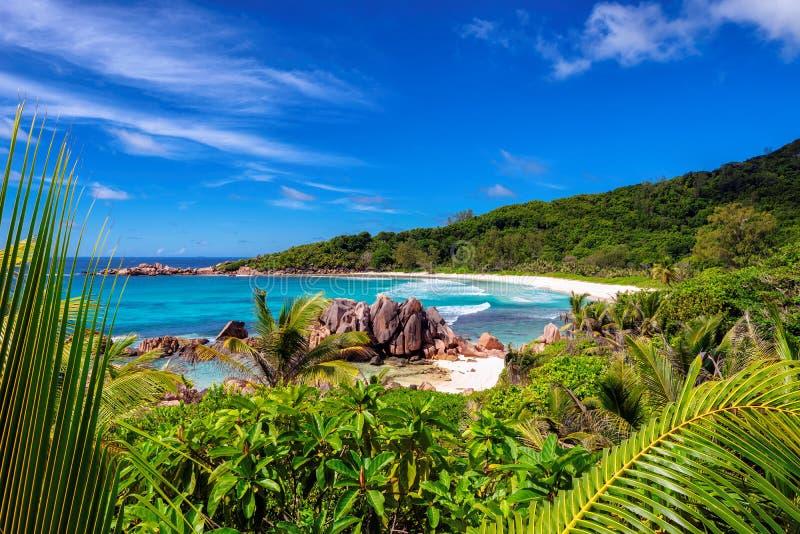Cocos de Anse La mayoría de la playa hermosa en el digue del La, Seychelles foto de archivo libre de regalías