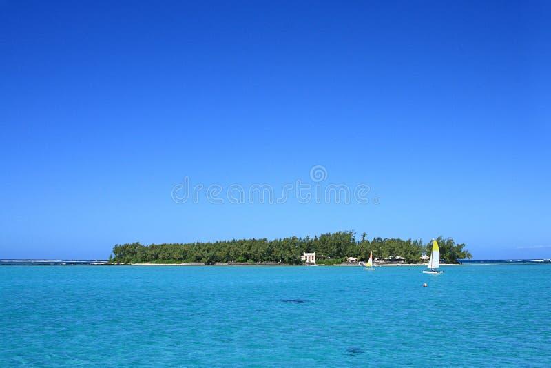 Cocos de DES Deux d'Ile, Îles Maurice photos libres de droits