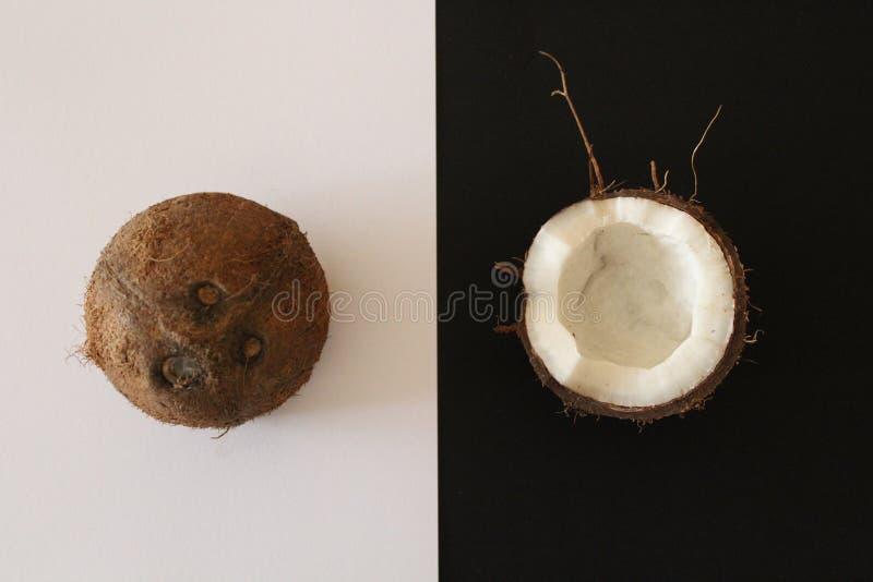 Cocos en el fondo blanco y negro imagenes de archivo