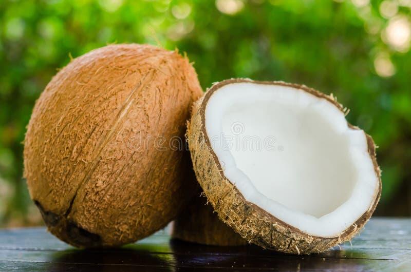 Cocos maduros e abertos fotografia de stock