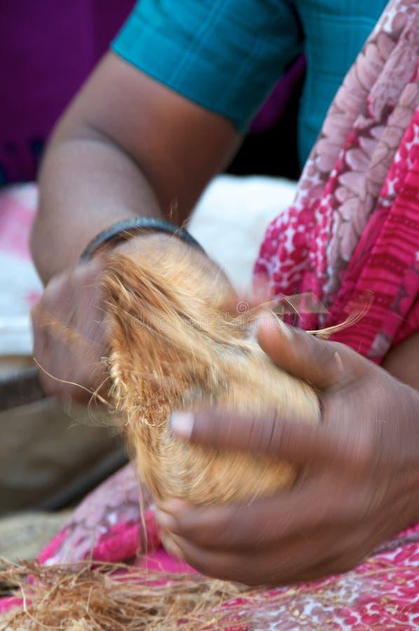 Cocos Pealing Fotos de archivo