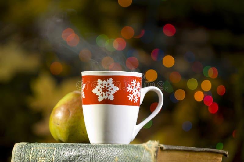 Cocos quentes com decorações do Natal foto de stock
