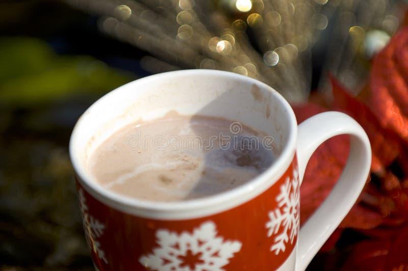 Cocos quentes com decorações do Natal fotos de stock royalty free