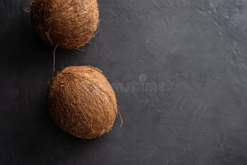 Cocount sec tropical sur le fond noir Copiez le spase photographie stock