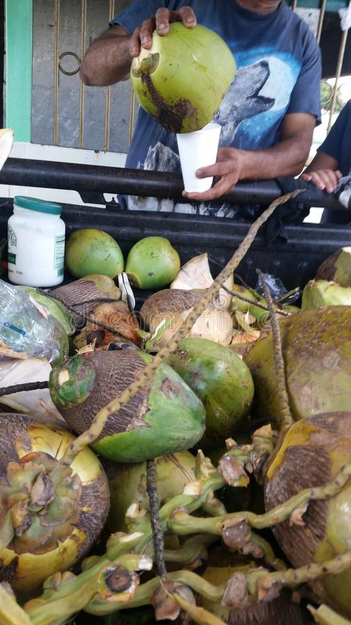 Cocowasser lizenzfreie stockbilder