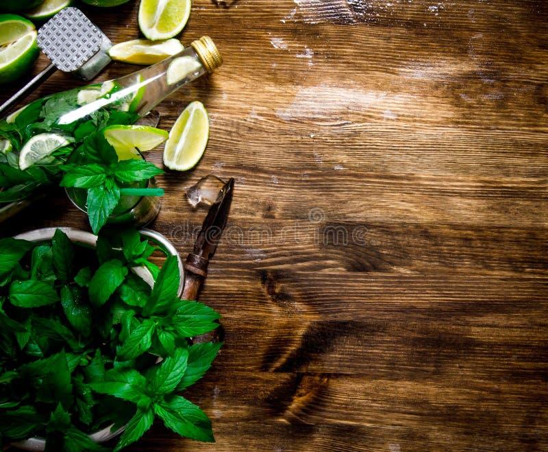 Coctail - limefrukter, rom, mintkaramellsidor, iskuber royaltyfri fotografi