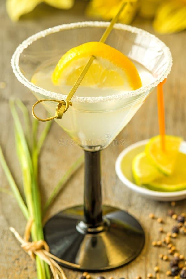 Coctail med citronskivan royaltyfria bilder