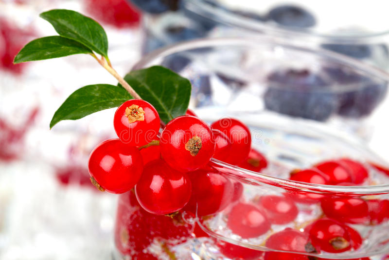 Coctail med vinbäret royaltyfria bilder