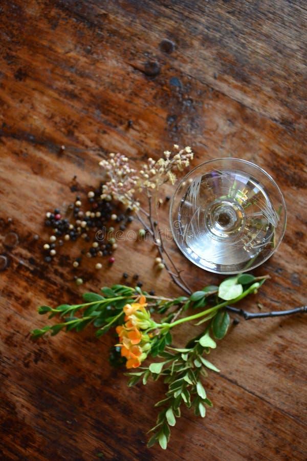 Coctail och botanicals fotografering för bildbyråer