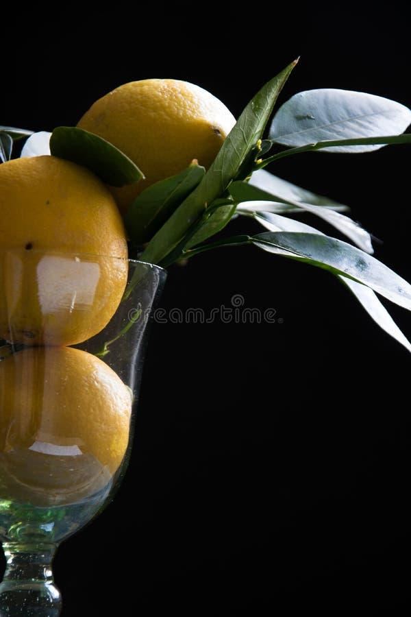 Coctailexponeringsglas med nya citroner på svart bakgrund arkivbilder