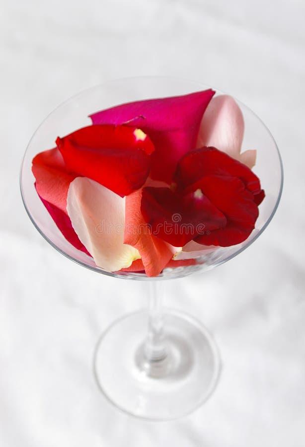 Download Coctel de Rose imagen de archivo. Imagen de contrato, martini - 1290845