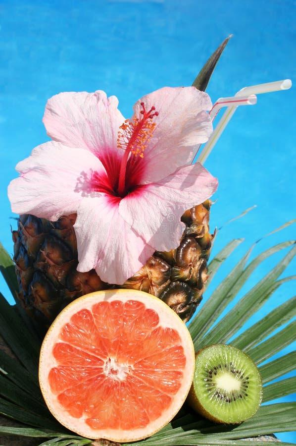 Coctel tropical fotografía de archivo libre de regalías