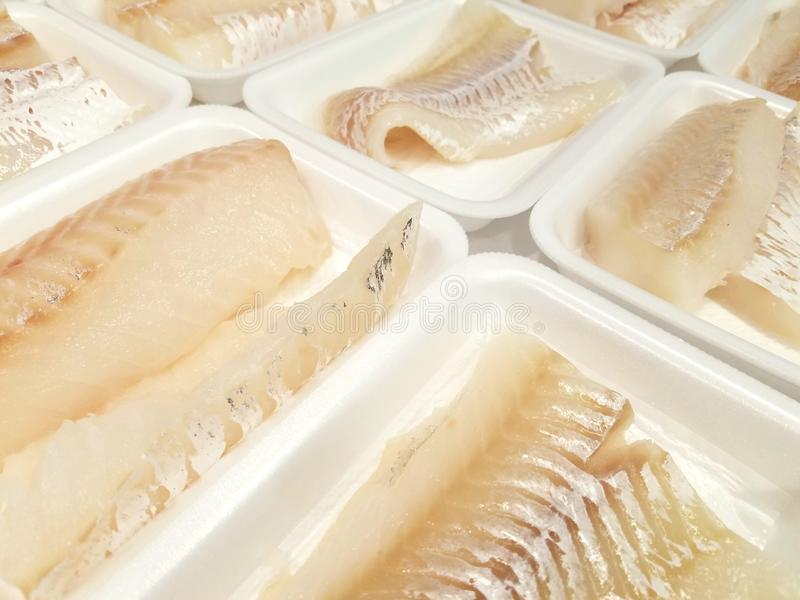 Cod fillets. Fresh and wild cod fillets on white trays  seafood canada usa fish ingredients delicious stock photos