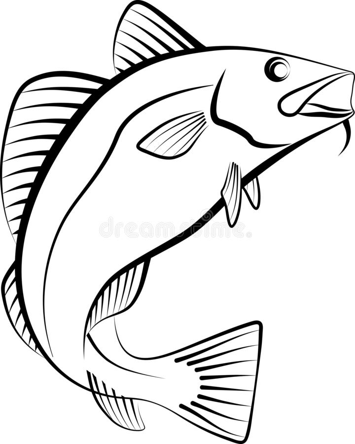 Cod. Fish - clip art illustration stock illustration