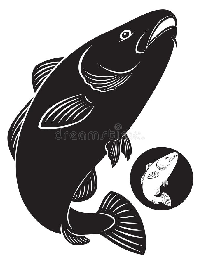 Cod fish. The figure shows a cod fish stock illustration
