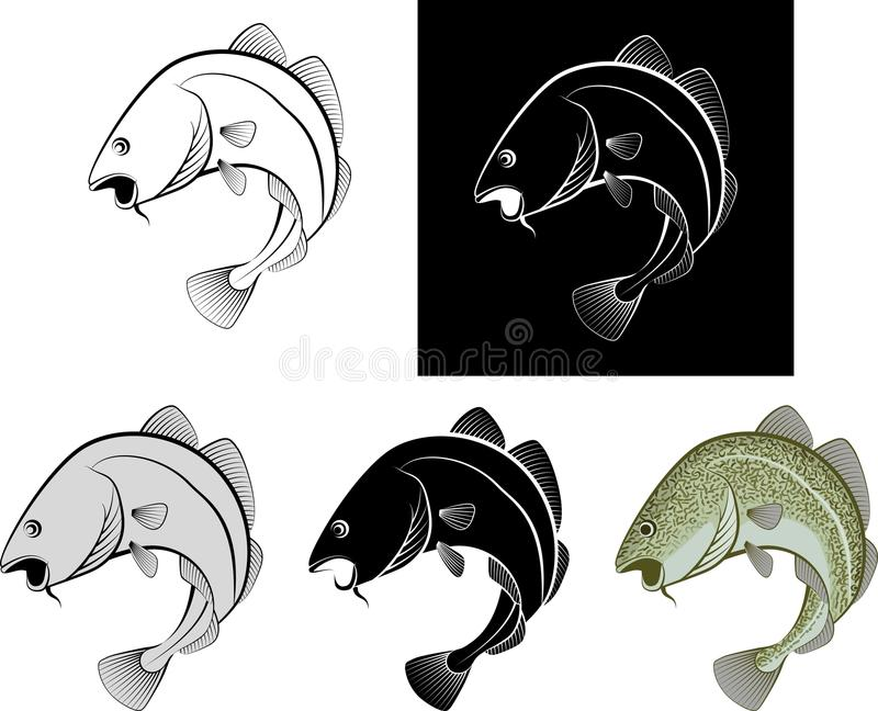 Cod. Isolated cod fish - clip art illustration and line art royalty free illustration